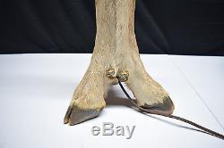 Vintage Deer Foot Leg Lamp & Shade Hunting Cabin Lodge Man Cave Hoof Feet WORKS